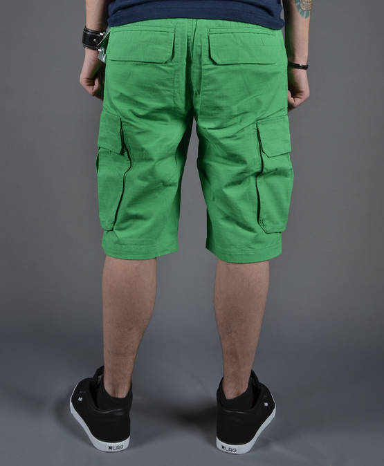 LRG-Beaming-Out-Cargo-Shorts-7C126002-2.JPG