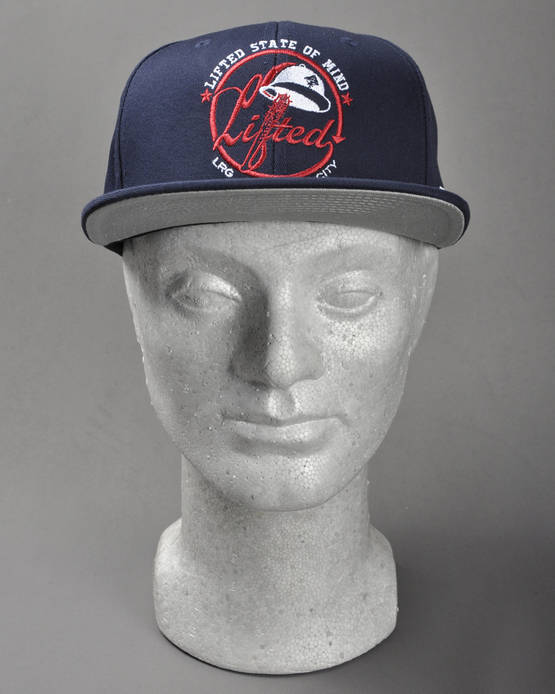 LRG-CC-Lifted-State-Of-Mind-Hat-7Y142517-NAVY-4.jpg
